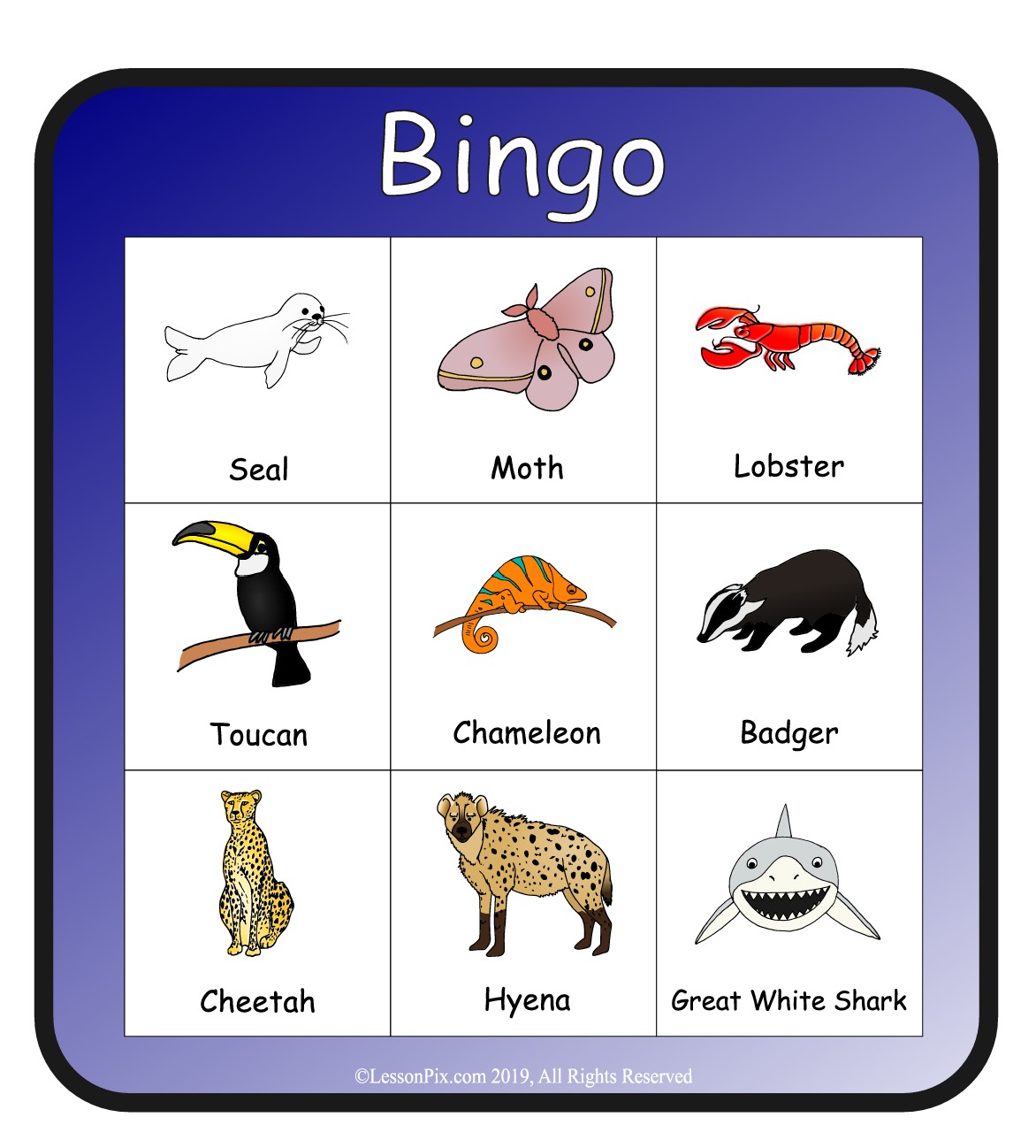 Bingo cards and Draw cards
